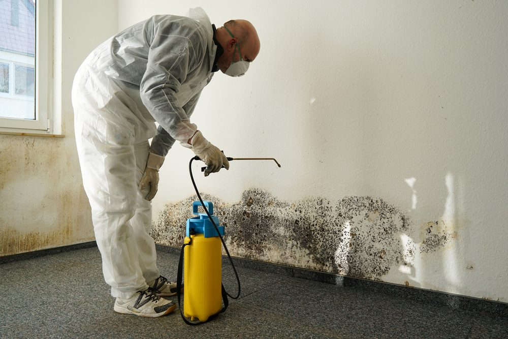 man in ppe clothing spraying mold on apartment wall